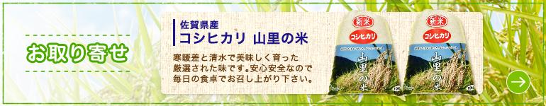 お取り寄せ 佐賀県産 コシヒカリ 山里の米